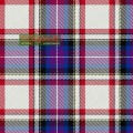 Tartan - Bruce of Kinnaird Dress